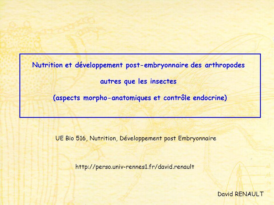 Nutrition et développement post-embryonnaire des arthropodes autres que les insectes (aspects morpho-anatomiques et contrôle endocrine) UE Bio 516, Nutrition, Développement post Embryonnaire David RENAULT http://perso.univ-rennes1.fr/david.renault