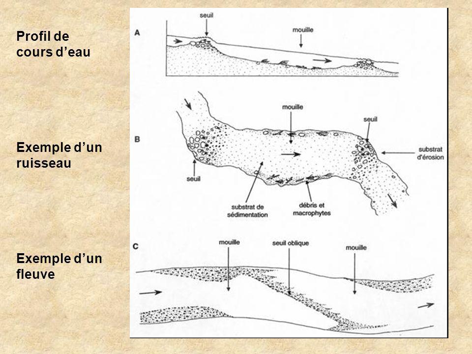 Profil de cours deau Exemple dun ruisseau Exemple dun fleuve