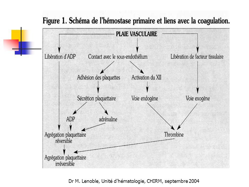 Dr M. Lenoble, Unité d'hématologie, CHIRM, septembre 2004