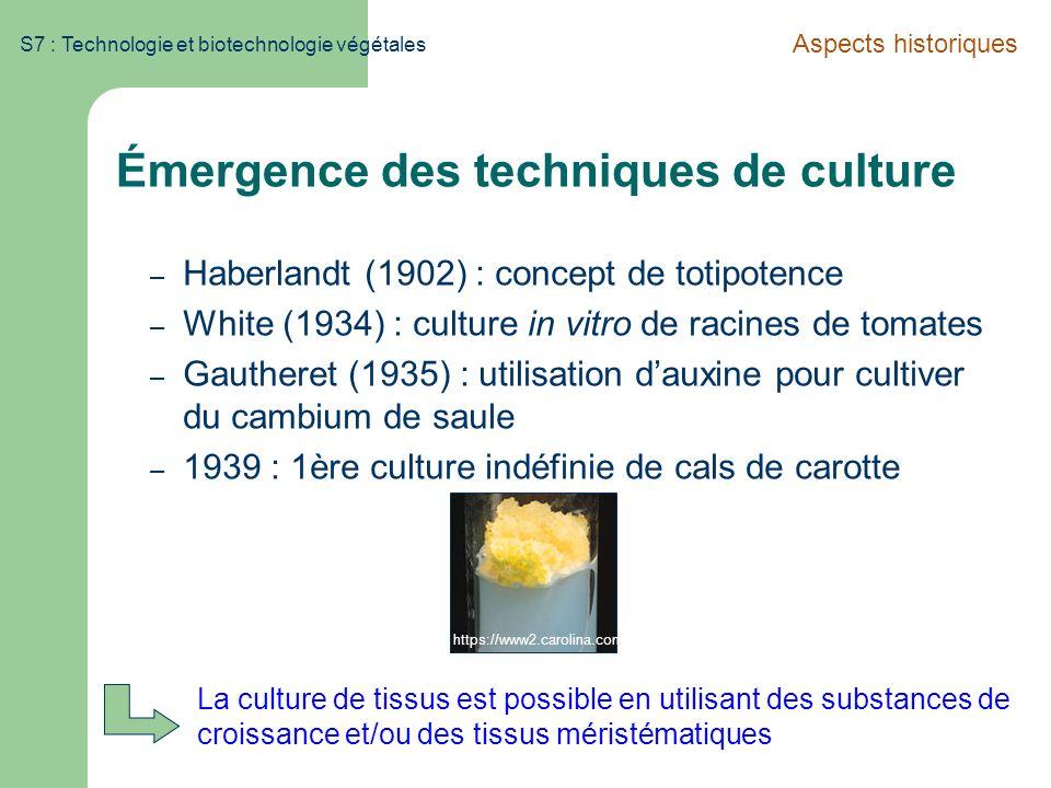 S7 : Technologie et biotechnologie végétales Émergence des techniques de culture – Haberlandt (1902) : concept de totipotence – White (1934) : culture