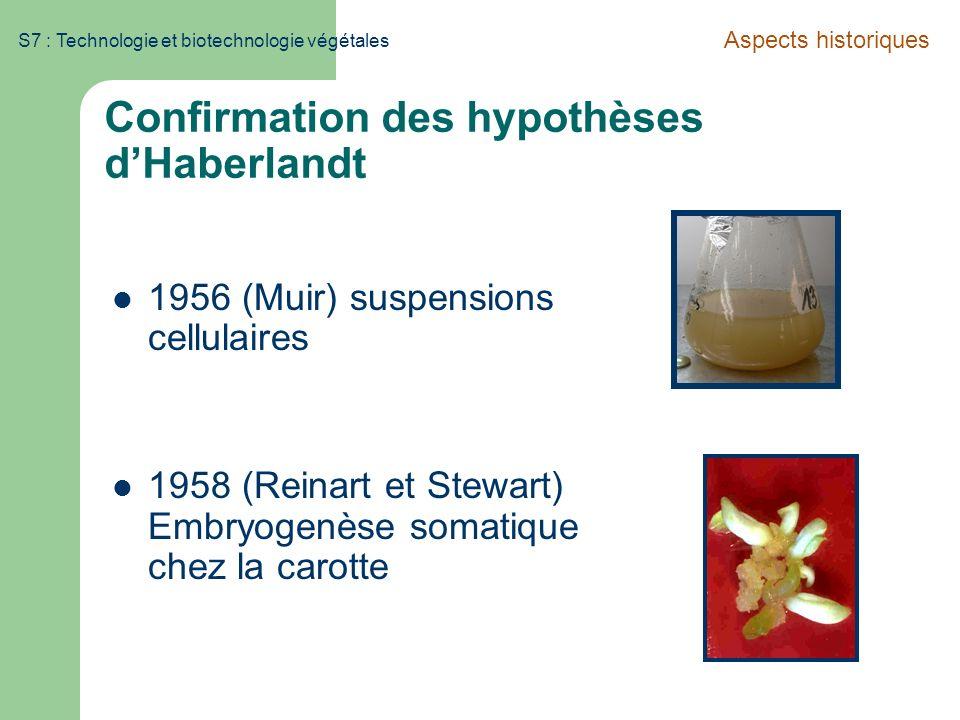S7 : Technologie et biotechnologie végétales Confirmation des hypothèses dHaberlandt 1956 (Muir) suspensions cellulaires 1958 (Reinart et Stewart) Emb