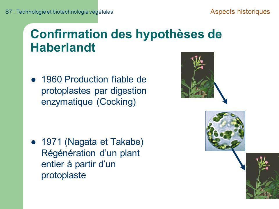 S7 : Technologie et biotechnologie végétales Confirmation des hypothèses de Haberlandt 1960 Production fiable de protoplastes par digestion enzymatiqu