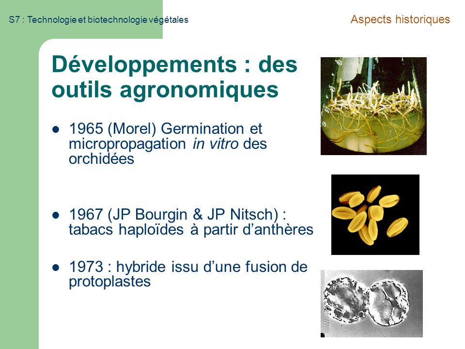 S7 : Technologie et biotechnologie végétales Développements : des outils agronomiques 1965 (Morel) Germination et micropropagation in vitro des orchid