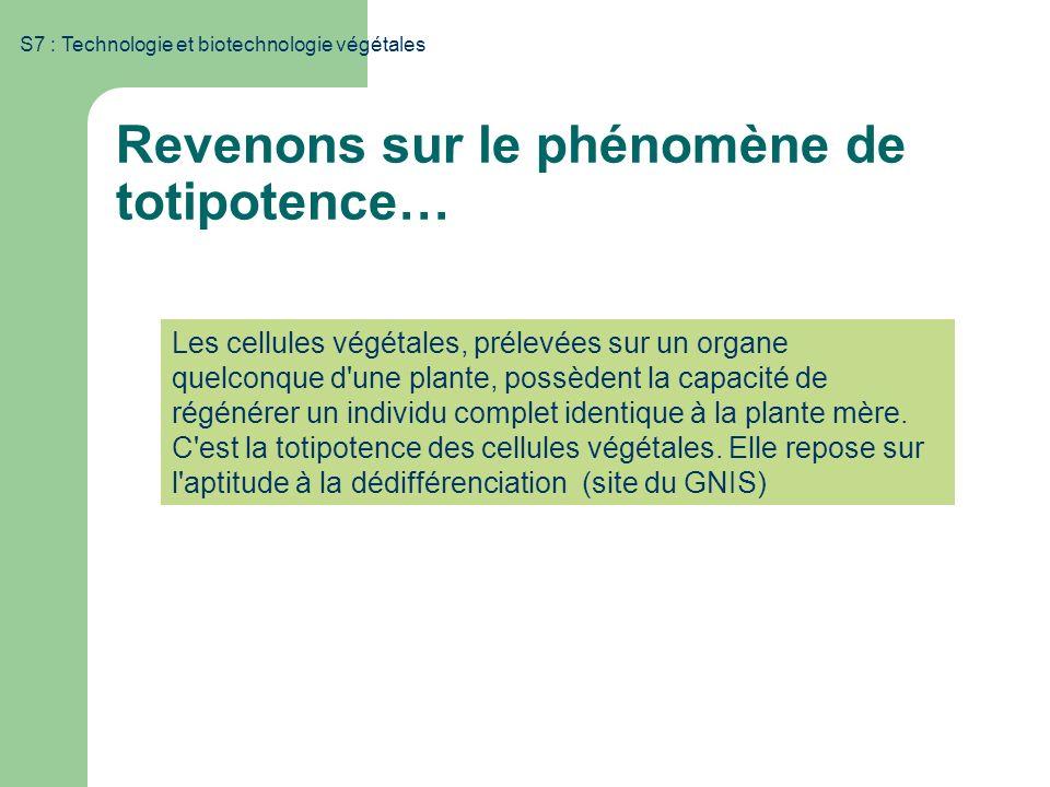 S7 : Technologie et biotechnologie végétales Les cellules végétales, prélevées sur un organe quelconque d'une plante, possèdent la capacité de régénér