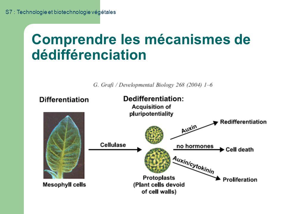 S7 : Technologie et biotechnologie végétales Comprendre les mécanismes de dédifférenciation Modulation de lexpression génétique via des mécanismes épi