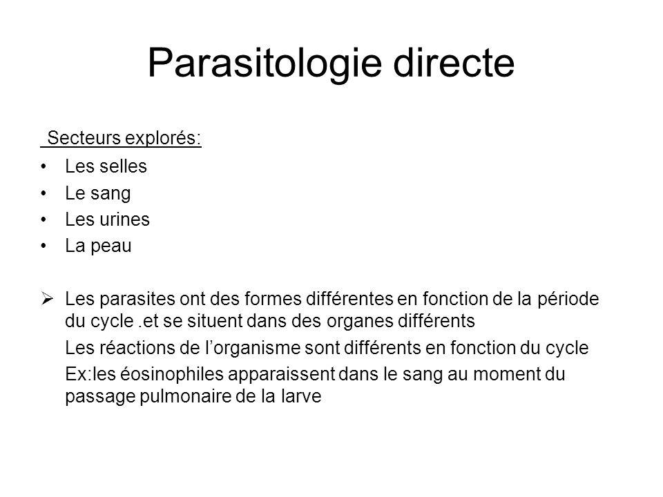 Parasitologie directe Secteurs explorés: Les selles Le sang Les urines La peau Les parasites ont des formes différentes en fonction de la période du c