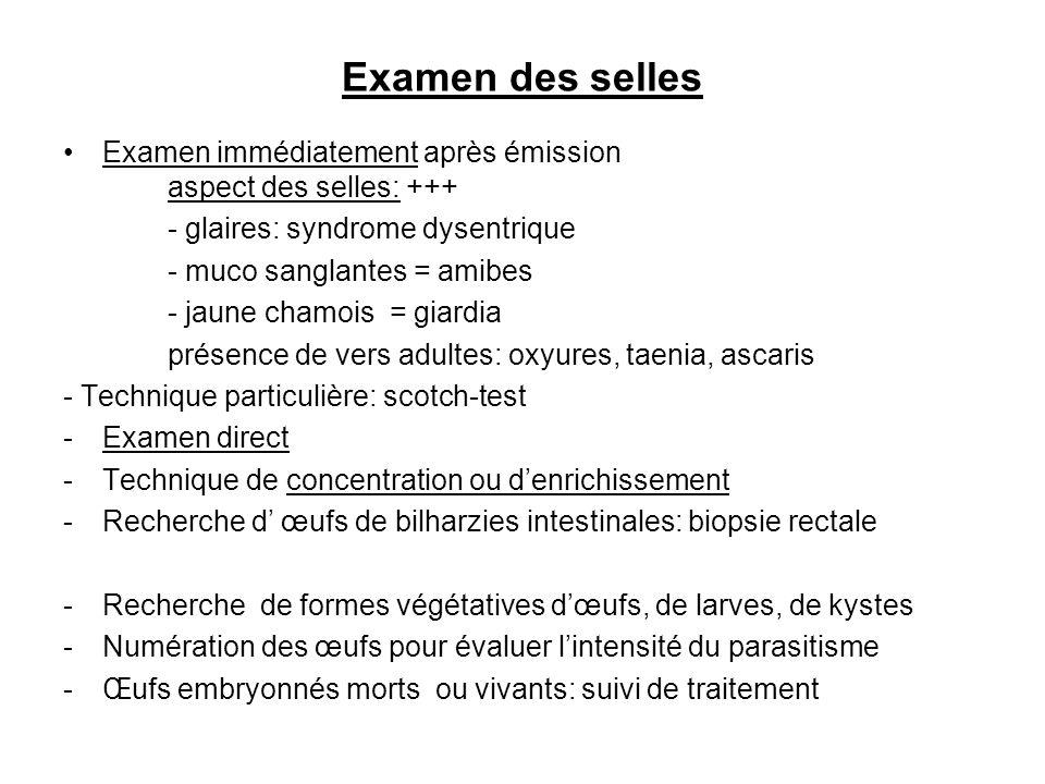 Examen des selles Examen immédiatement après émission aspect des selles: +++ - glaires: syndrome dysentrique - muco sanglantes = amibes - jaune chamoi