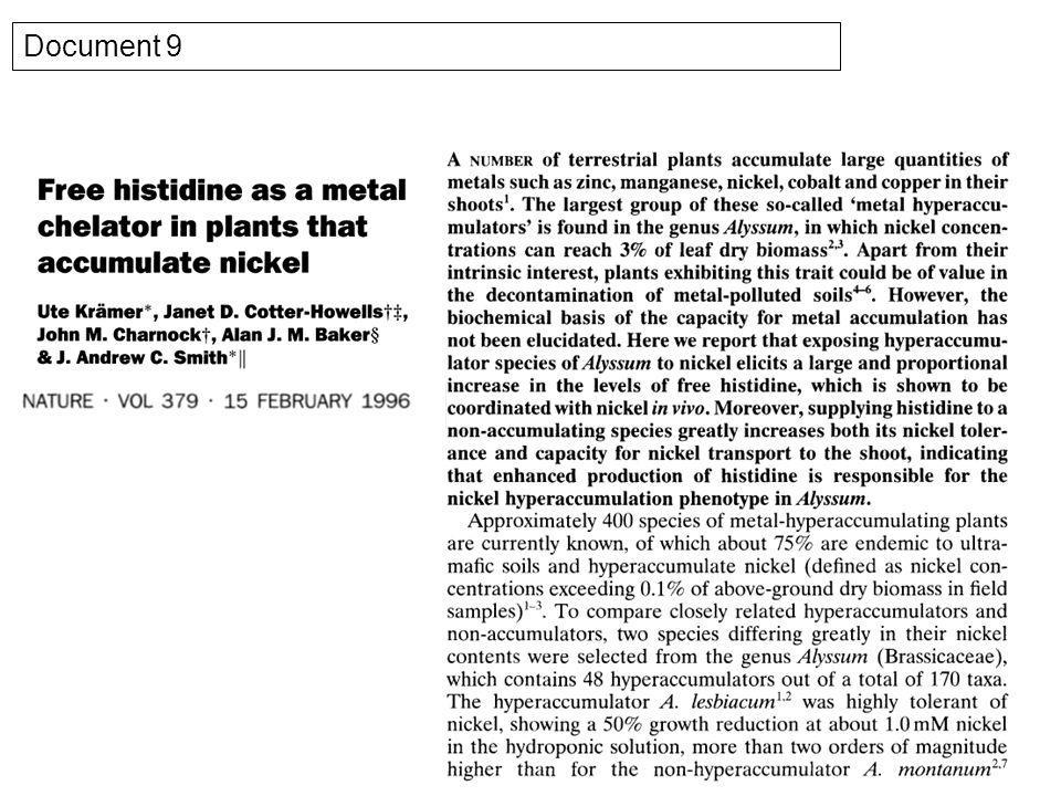 Figure 19 : Impact de la surexpression de HMA3 sur la compartimentation subcellulaire du cadmium visualisée à laide dun fluorophore spécifique du Cd