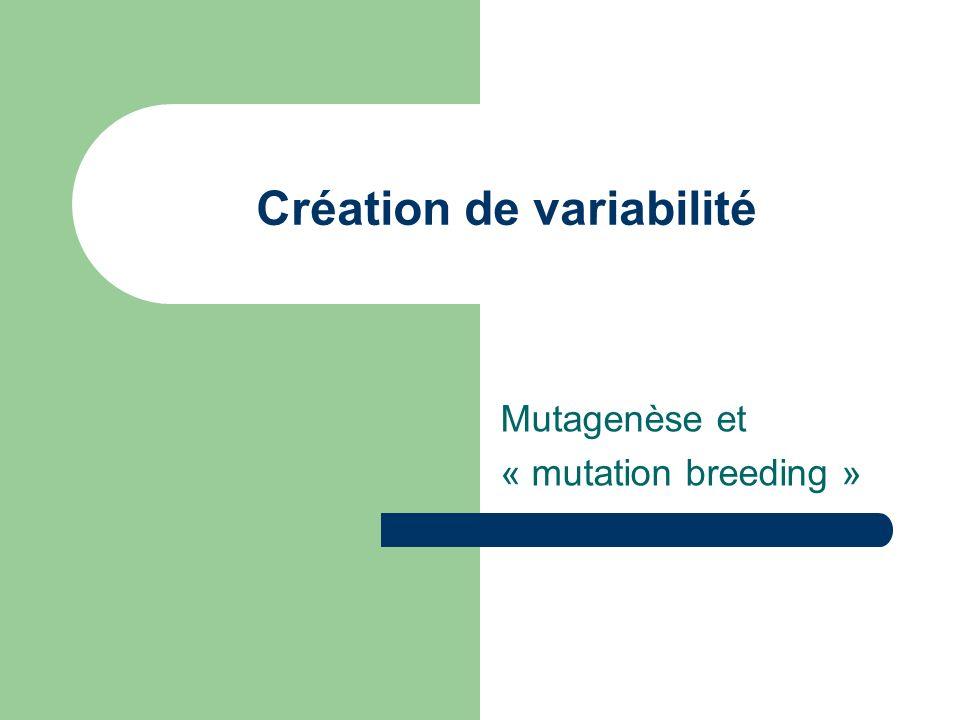 Création de variabilité Mutagenèse et « mutation breeding »
