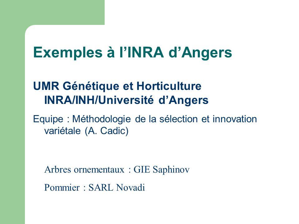 Exemples à lINRA dAngers UMR Génétique et Horticulture INRA/INH/Université dAngers Equipe : Méthodologie de la sélection et innovation variétale (A. C