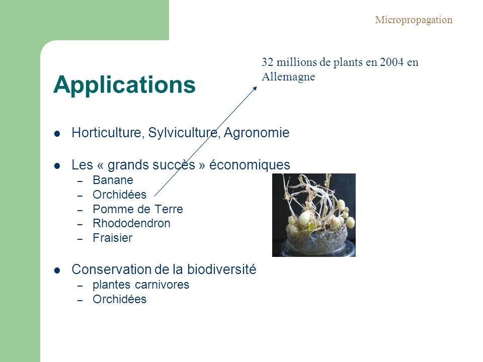 Applications Horticulture, Sylviculture, Agronomie Les « grands succès » économiques – Banane – Orchidées – Pomme de Terre – Rhododendron – Fraisier C