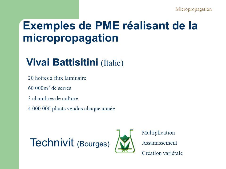 20 hottes à flux laminaire 60 000m 2 de serres 3 chambres de culture 4 000 000 plants vendus chaque année Technivit (Bourges) Multiplication Assainiss