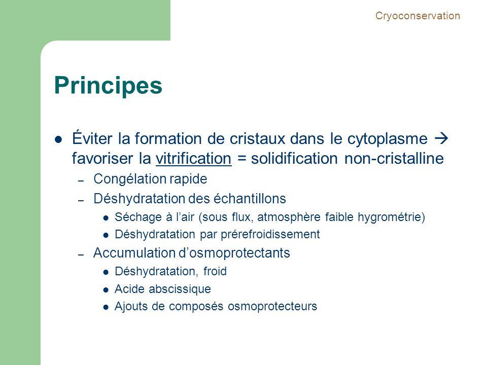 Principes Éviter la formation de cristaux dans le cytoplasme favoriser la vitrification = solidification non-cristalline – Congélation rapide – Déshyd