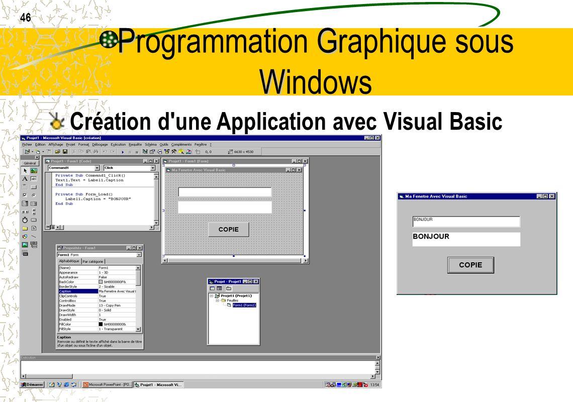 46 PG W Programmation Graphique sous Windows Création d'une Application avec Visual Basic