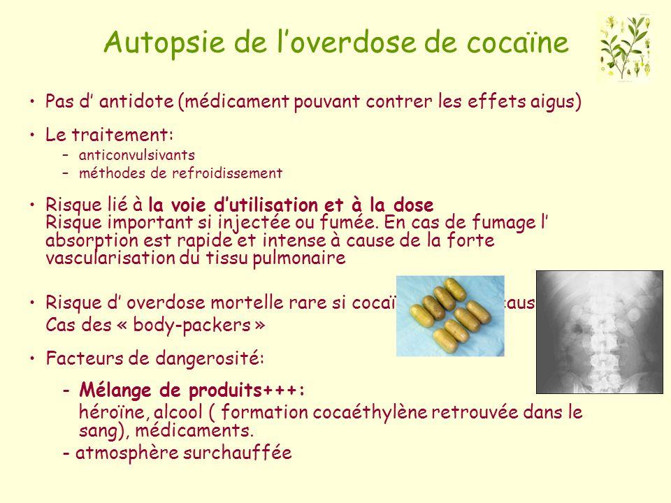 Autopsie de loverdose de cocaïne Pas d antidote (médicament pouvant contrer les effets aigus) Le traitement: –anticonvulsivants –méthodes de refroidis