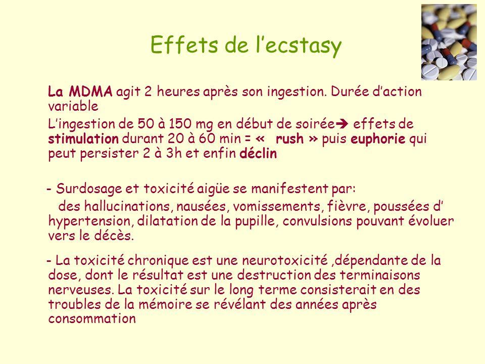 Effets de lecstasy La MDMA agit 2 heures après son ingestion. Durée daction variable Lingestion de 50 à 150 mg en début de soirée effets de stimulatio
