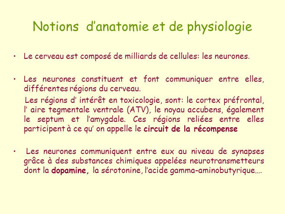Notions danatomie et de physiologie Le cerveau est composé de milliards de cellules: les neurones. Les neurones constituent et font communiquer entre