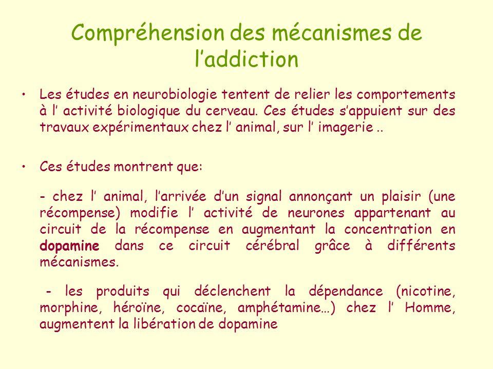 Compréhension des mécanismes de laddiction Les études en neurobiologie tentent de relier les comportements à l activité biologique du cerveau. Ces étu