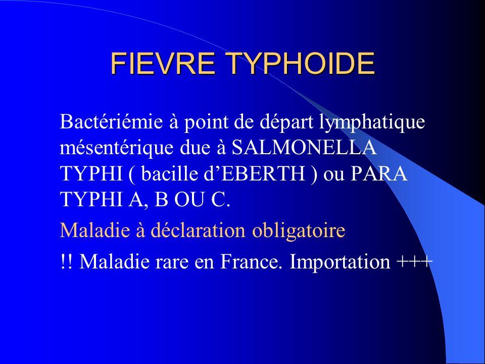 FIEVRE TYPHOIDE Bactériémie à point de départ lymphatique mésentérique due à SALMONELLA TYPHI ( bacille dEBERTH ) ou PARA TYPHI A, B OU C. Maladie à d