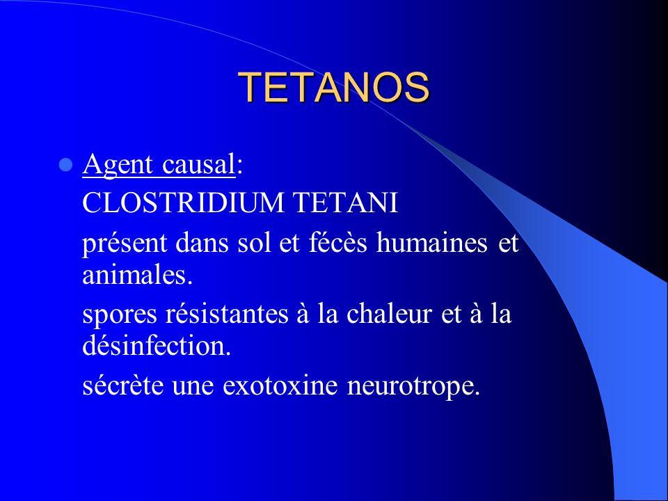 TETANOS Agent causal: CLOSTRIDIUM TETANI présent dans sol et fécès humaines et animales. spores résistantes à la chaleur et à la désinfection. sécrète