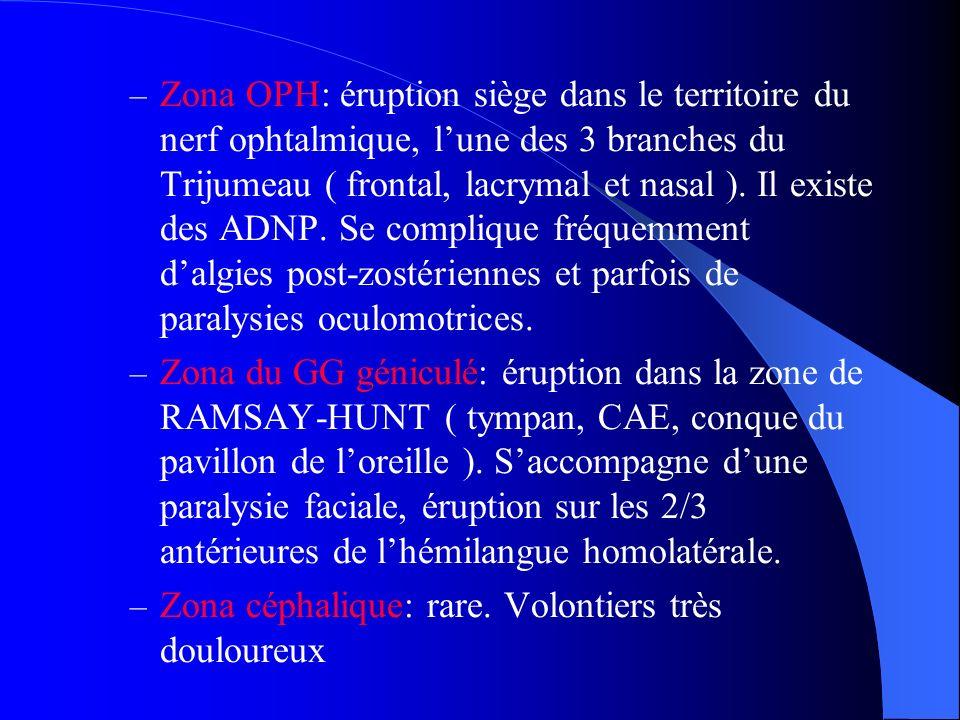 – Zona OPH: éruption siège dans le territoire du nerf ophtalmique, lune des 3 branches du Trijumeau ( frontal, lacrymal et nasal ). Il existe des ADNP