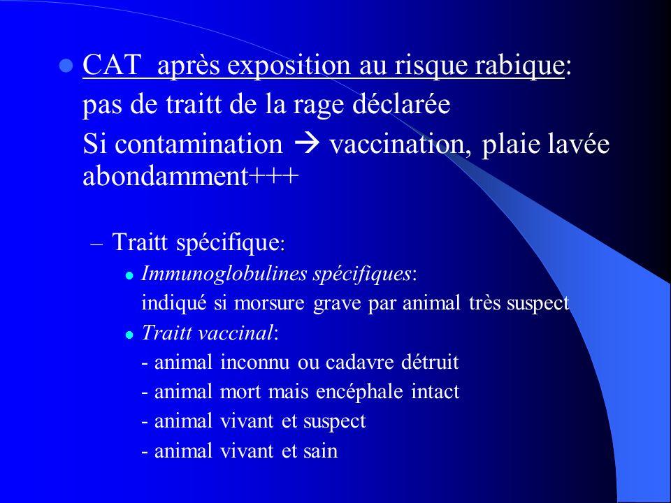 CAT après exposition au risque rabique: pas de traitt de la rage déclarée Si contamination vaccination, plaie lavée abondamment+++ : – Traitt spécifiq