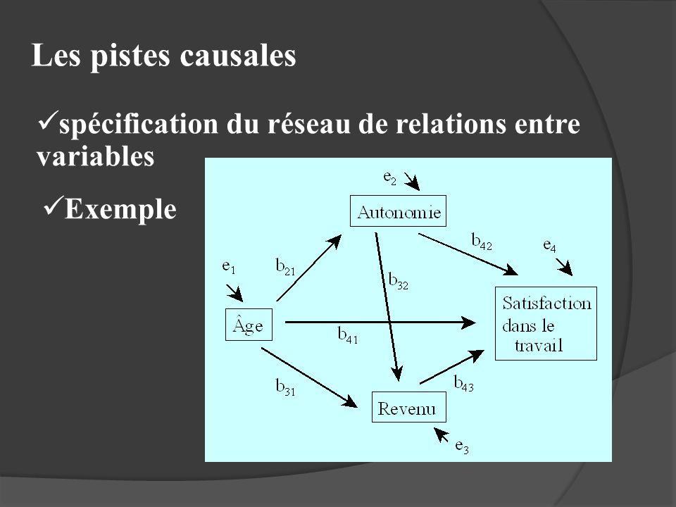 Les pistes causales spécification du réseau de relations entre variables Exemple