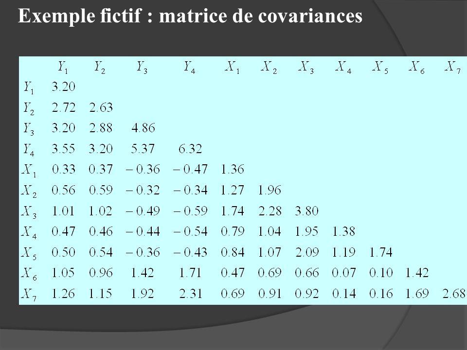 Exemple fictif : matrice de covariances