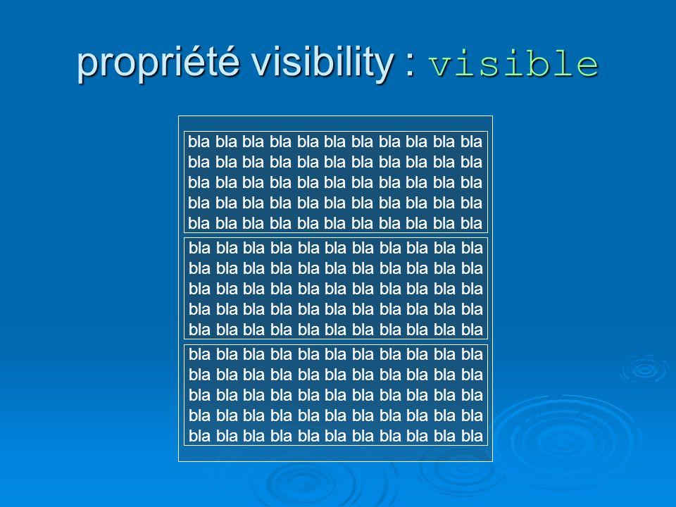 propriété visibility : visible bla bla bla bla bla bla bla bla bla bla bla