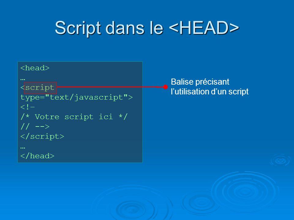 Script dans le Script dans le … <!– /* Votre script ici */ // --> … Balise précisant lutilisation dun script