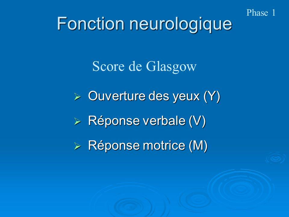 Fonction neurologique Ouverture des yeux (Y) Ouverture des yeux (Y) Réponse verbale (V) Réponse verbale (V) Réponse motrice (M) Réponse motrice (M) Score de Glasgow Phase 1