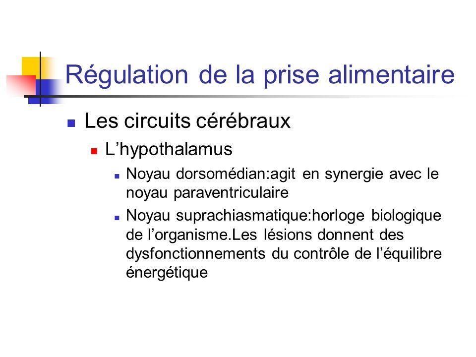 Régulation de la prise alimentaire Les circuits cérébraux Lhypothalamus Noyau dorsomédian:agit en synergie avec le noyau paraventriculaire Noyau supra