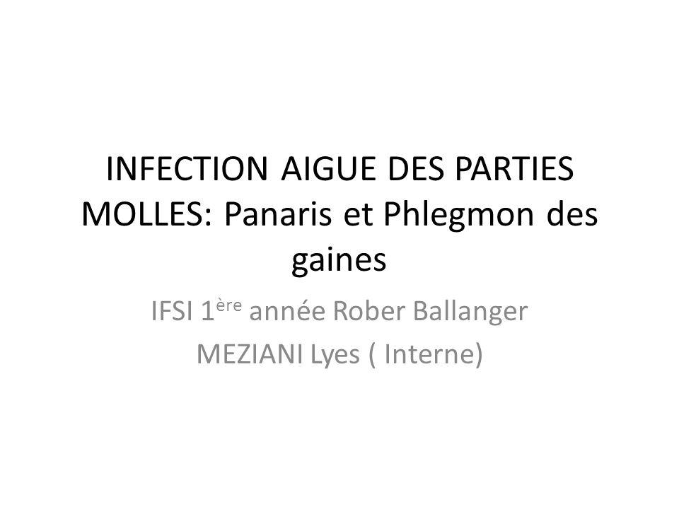 INFECTION AIGUE DES PARTIES MOLLES: Panaris et Phlegmon des gaines IFSI 1 ère année Rober Ballanger MEZIANI Lyes ( Interne)