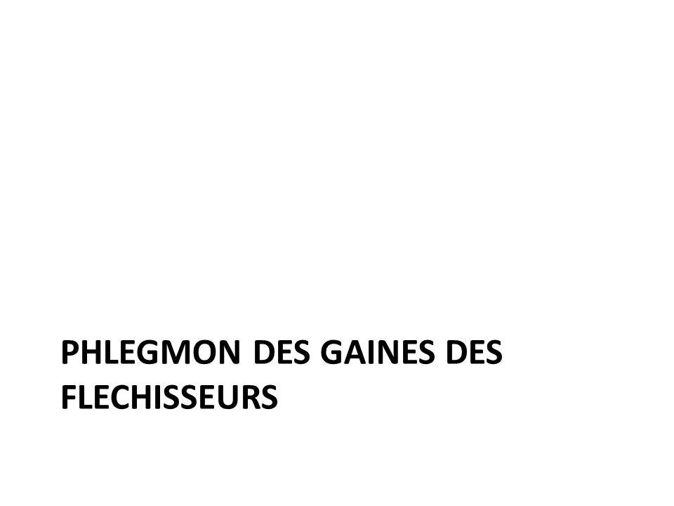 PHLEGMON DES GAINES DES FLECHISSEURS