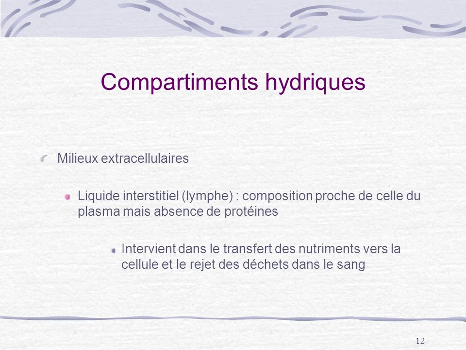 12 Compartiments hydriques Milieux extracellulaires Liquide interstitiel (lymphe) : composition proche de celle du plasma mais absence de protéines In