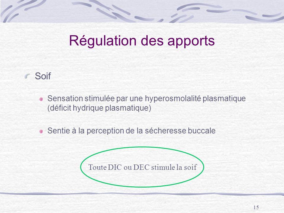 15 Régulation des apports Soif Sensation stimulée par une hyperosmolalité plasmatique (déficit hydrique plasmatique) Sentie à la perception de la séch