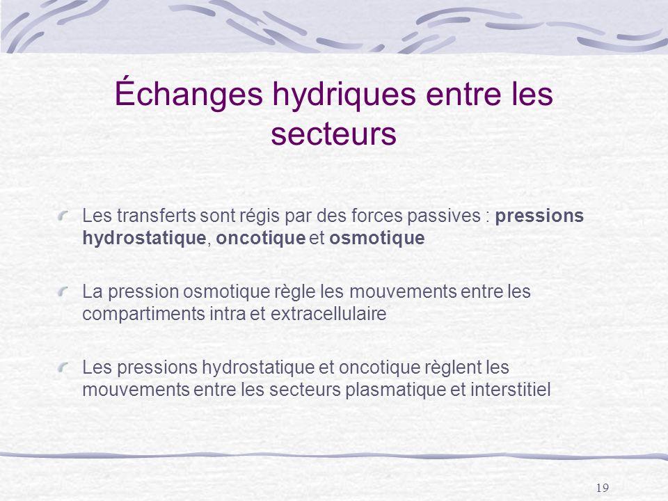 19 Échanges hydriques entre les secteurs Les transferts sont régis par des forces passives : pressions hydrostatique, oncotique et osmotique La pressi