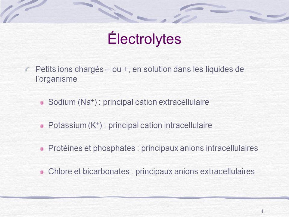 4 Électrolytes Petits ions chargés – ou +, en solution dans les liquides de lorganisme Sodium (Na + ) : principal cation extracellulaire Potassium (K