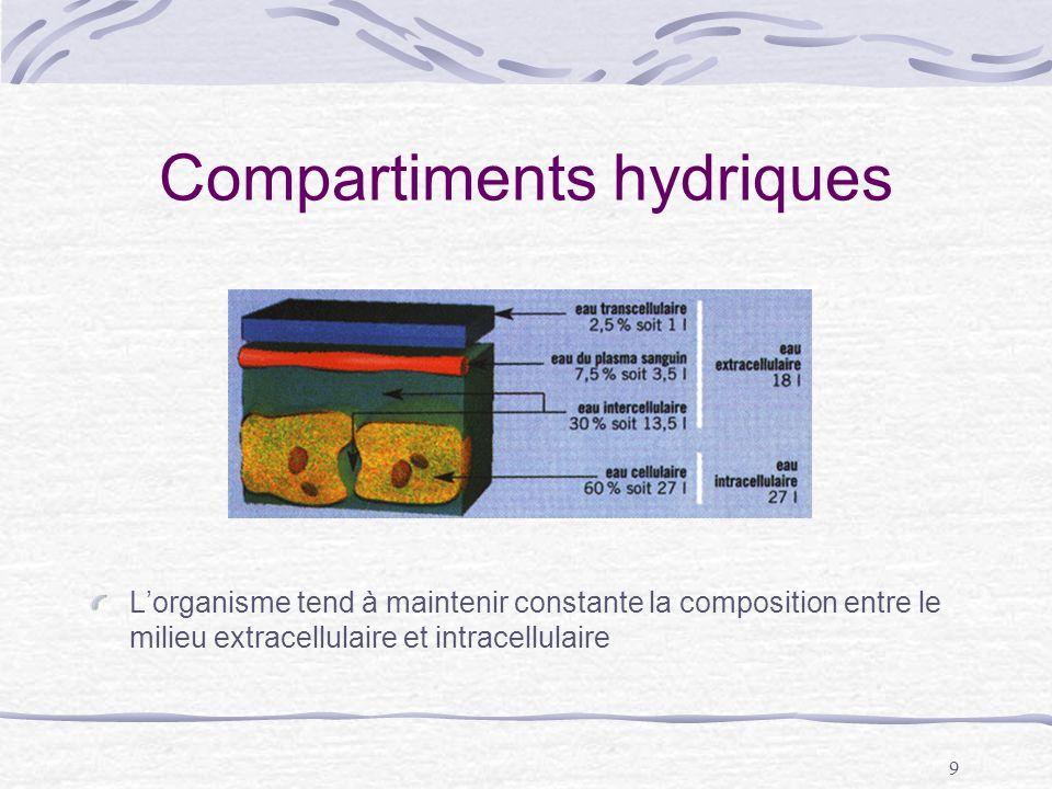9 Compartiments hydriques Lorganisme tend à maintenir constante la composition entre le milieu extracellulaire et intracellulaire