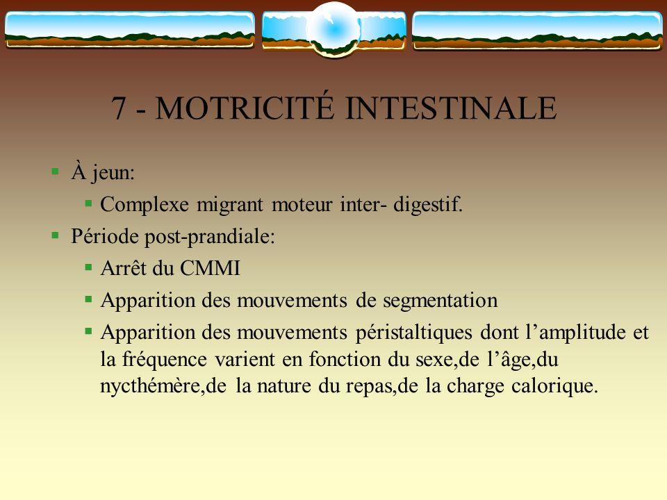 7 - MOTRICITÉ INTESTINALE À jeun: Complexe migrant moteur inter- digestif. Période post-prandiale: Arrêt du CMMI Apparition des mouvements de segmenta