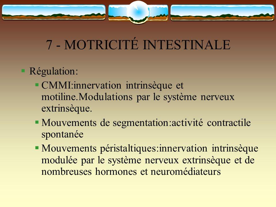 7 - MOTRICITÉ INTESTINALE Régulation: CMMI:innervation intrinsèque et motiline.Modulations par le système nerveux extrinsèque. Mouvements de segmentat