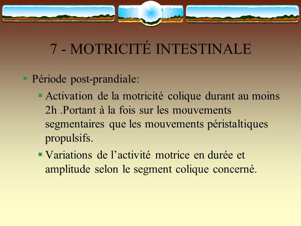 7 - MOTRICITÉ INTESTINALE Période post-prandiale: Activation de la motricité colique durant au moins 2h.Portant à la fois sur les mouvements segmentai