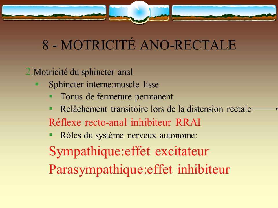 8 - MOTRICITÉ ANO-RECTALE 2.Motricité du sphincter anal Sphincter interne:muscle lisse Tonus de fermeture permanent Relâchement transitoire lors de la