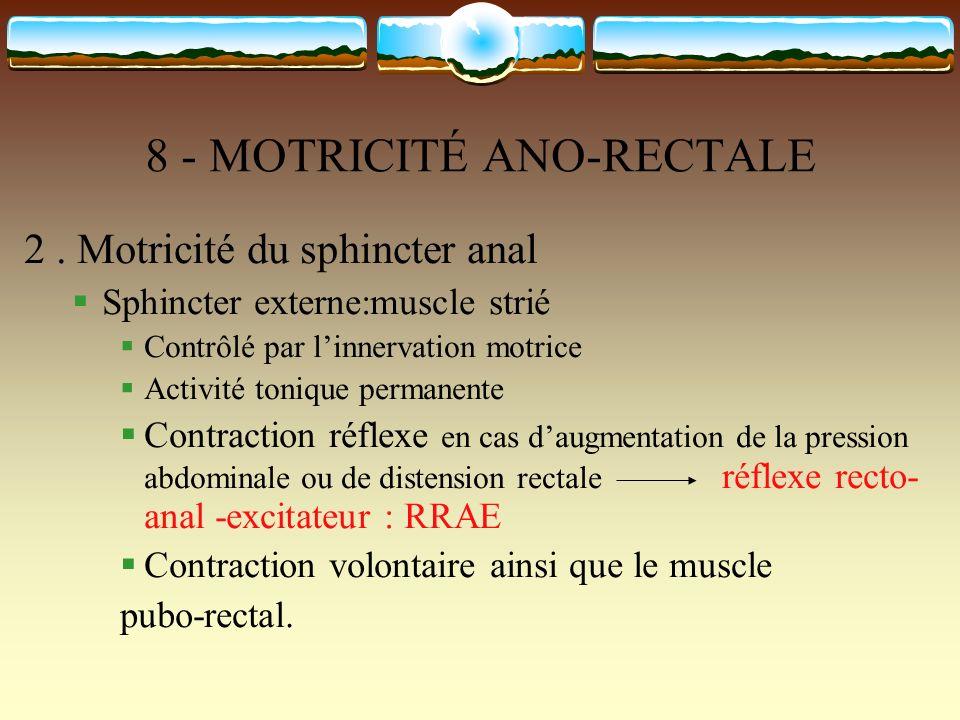 8 - MOTRICITÉ ANO-RECTALE 2. Motricité du sphincter anal Sphincter externe:muscle strié Contrôlé par linnervation motrice Activité tonique permanente