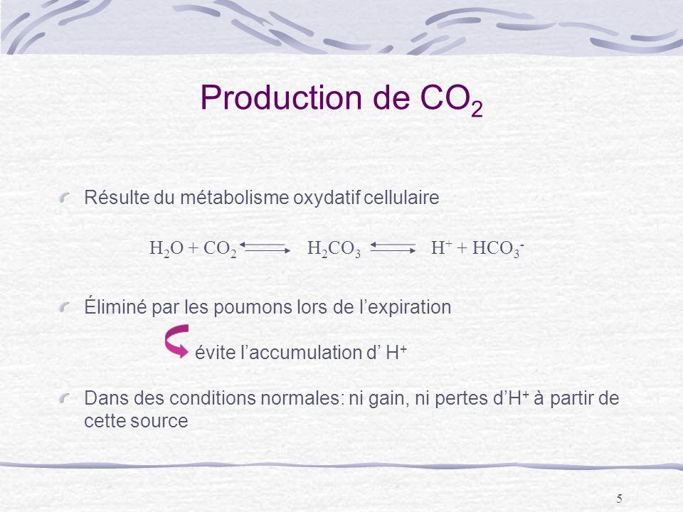 5 Production de CO 2 Résulte du métabolisme oxydatif cellulaire Éliminé par les poumons lors de lexpiration évite laccumulation d H + Dans des conditi