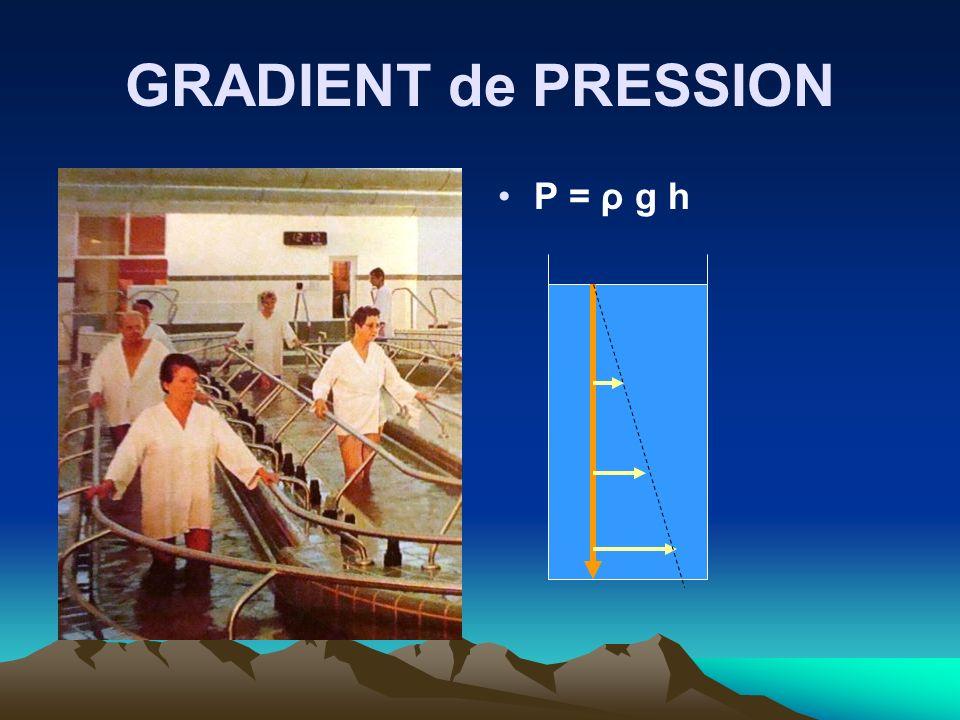 GRADIENT de PRESSION P = ρ g h