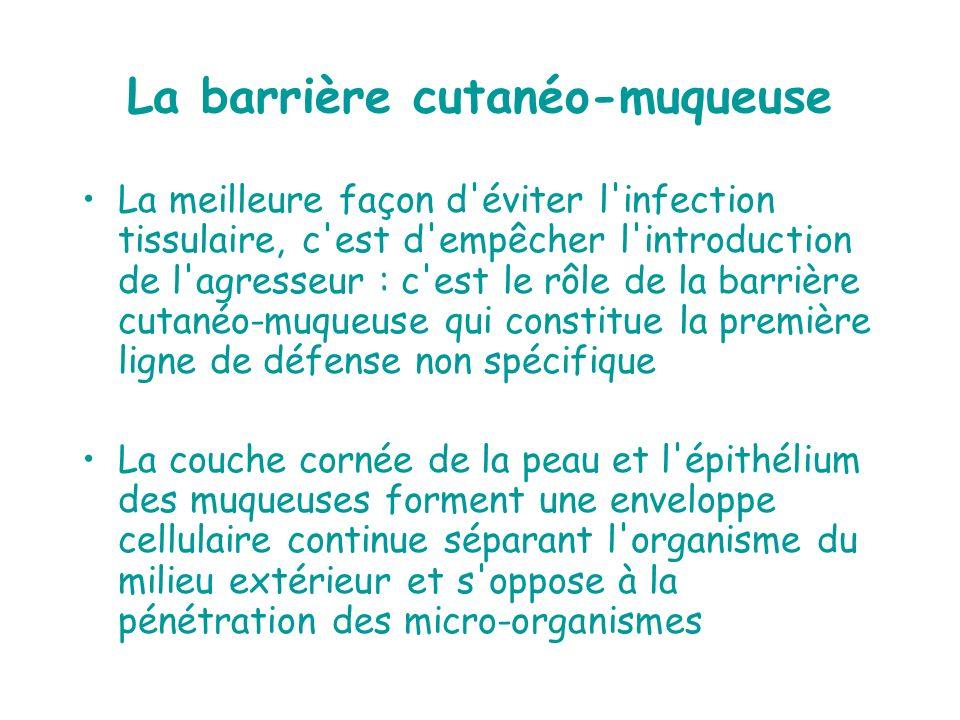 La barrière cutanéo-muqueuse La meilleure façon d'éviter l'infection tissulaire, c'est d'empêcher l'introduction de l'agresseur : c'est le rôle de la