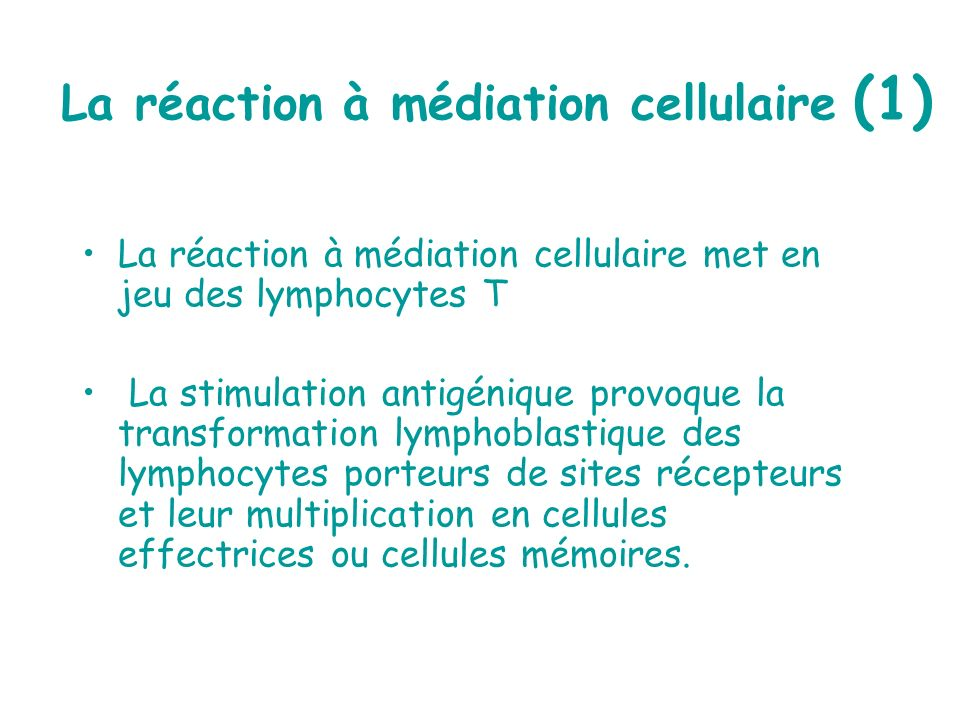 La réaction à médiation cellulaire (1) La réaction à médiation cellulaire met en jeu des lymphocytes T La stimulation antigénique provoque la transfor