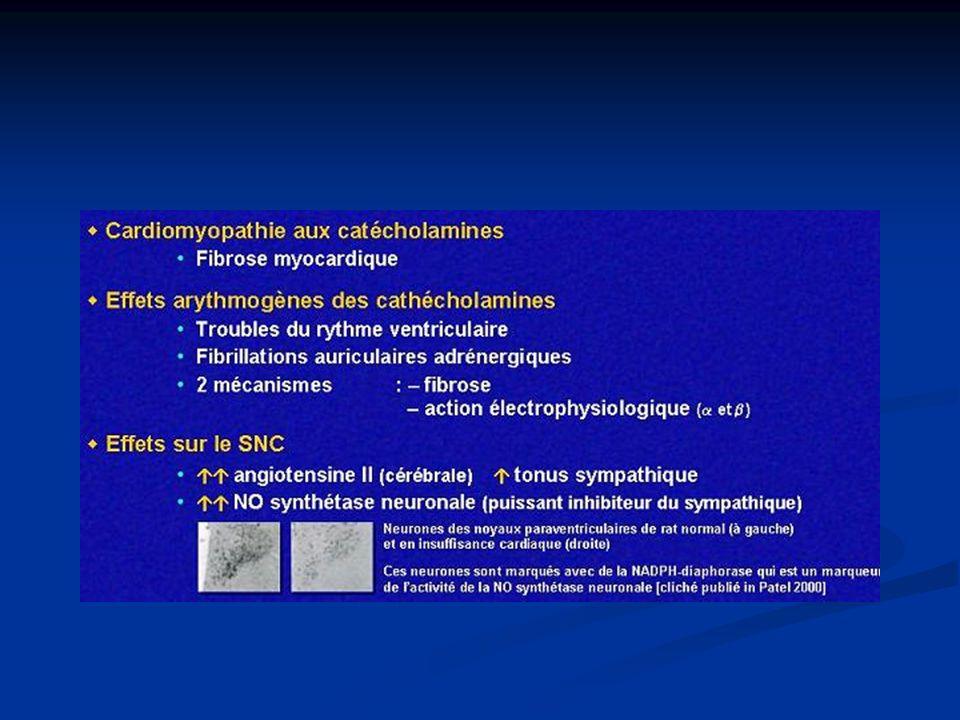 B/ Système rénine angiotensine aldostérone (SRAA) Lié : Lié : -à la stimulation sympathique au niveau rénal -à la stimulation sympathique au niveau rénal -à la diminution de la pression de perfusion au niveau de lartère afférente rénale -à la diminution de la pression de perfusion au niveau de lartère afférente rénale -à la modification de la charge sodée -à la modification de la charge sodée Augmentation de rénine plasmatique Augmentation de rénine plasmatique