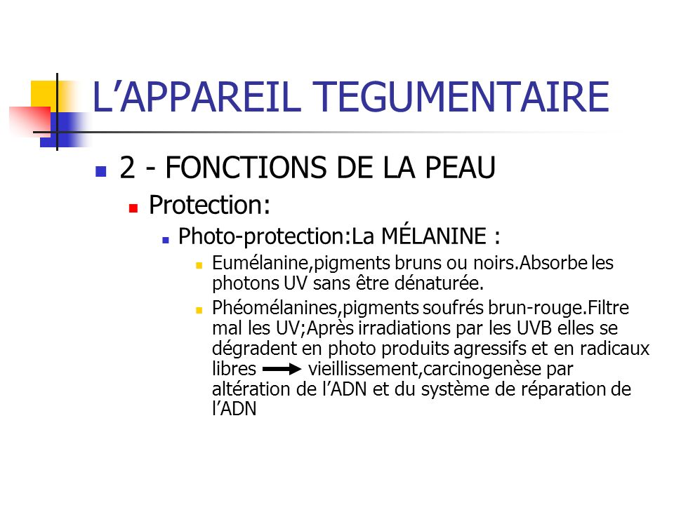 LAPPAREIL TEGUMENTAIRE 2 - FONCTIONS DE LA PEAU Protection: Photo-protection:La MÉLANINE : Eumélanine,pigments bruns ou noirs.Absorbe les photons UV s